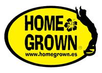 homegrown surfcamp